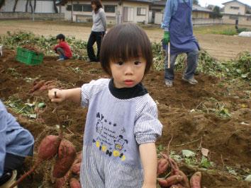 imohori-1.jpg