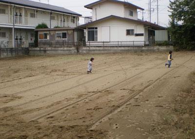 imohori-3.jpg